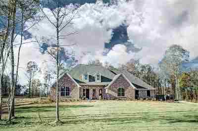 Brandon Single Family Home For Sale: 607 Kylemore Ln