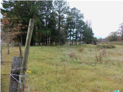 Leake County Residential Lots & Land For Sale: Hwy. 35 North