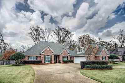 Brandon Single Family Home For Sale: 1011 Legacy Cir