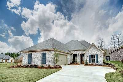 Pearl Single Family Home For Sale: 566 Asbury Lane Dr