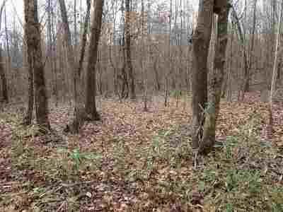Residential Lots & Land For Sale: 11 Hwy 17