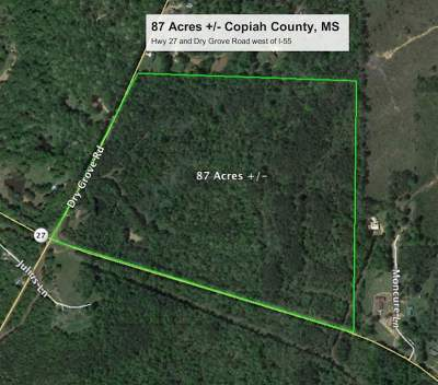 Residential Lots & Land For Sale: Hwy 27