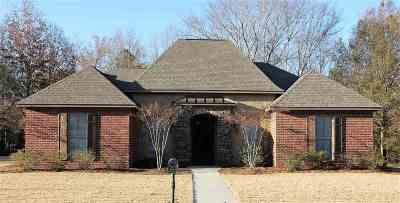 Brandon Single Family Home Contingent: 309 Woodlands Green Pl