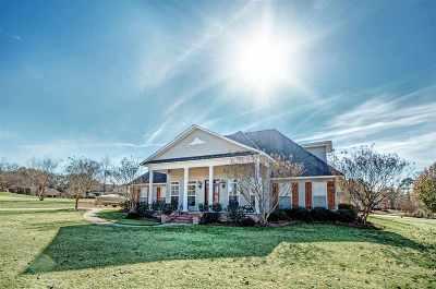 Brandon Single Family Home For Sale: 303 Warren Cv