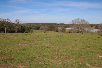 Leake County Residential Lots & Land For Sale: 2347 Comans Rd