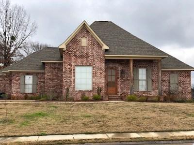Canton Single Family Home For Sale: 152 Hampton Hills Blvd