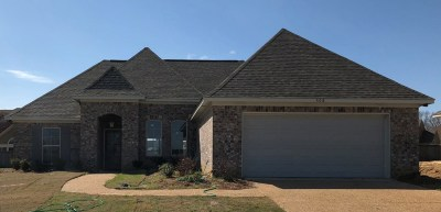 Pearl Single Family Home For Sale: 508 Westfield Dr
