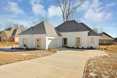Canton Single Family Home For Sale: 106 Trailbridge Way