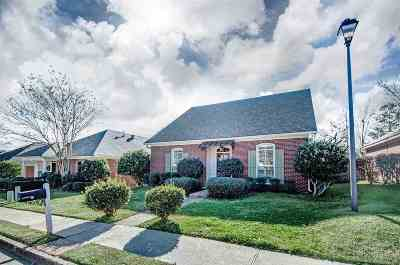 Ridgeland Single Family Home Contingent: 636 Camden Park Dr