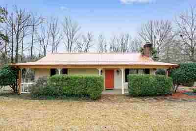 Brandon Single Family Home For Sale: 411 Hwy 468