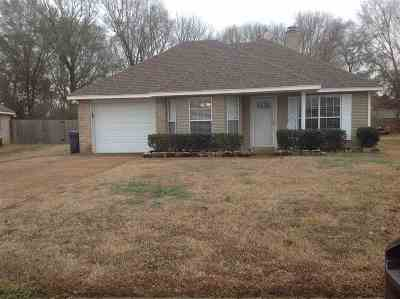 Byram Single Family Home For Sale: 2159 Meagan Dr