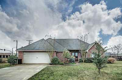 Flowood Single Family Home For Sale: 100 Common Pointe Dr