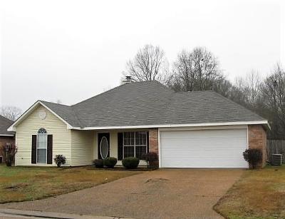 Byram Single Family Home For Sale: 942 Bullrun Dr