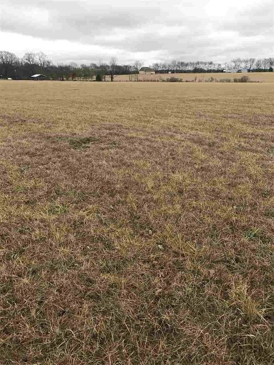 Brandon Residential Lots & Land For Sale: Old Hwy 43