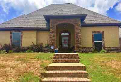 Brandon Single Family Home For Sale: 401 Emerald Trail Dr