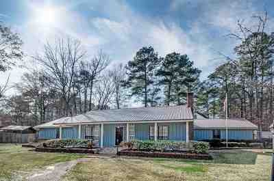 Brandon Single Family Home For Sale: 505 Bradford Dr