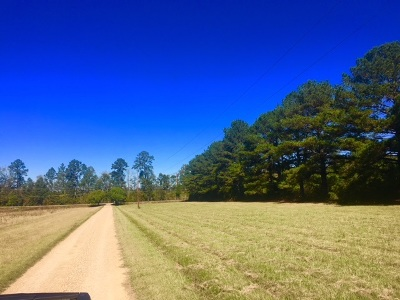 Rankin County Residential Lots & Land Contingent/Pending: 1 Hwy 43
