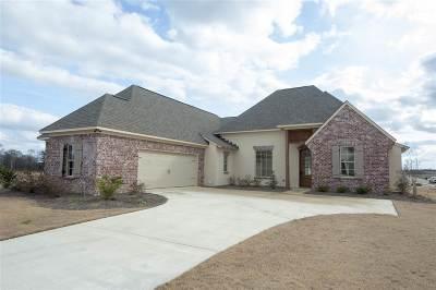 Canton Single Family Home For Sale: 216 Dunbar Trl