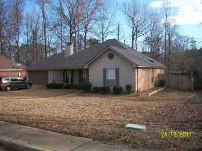 Rankin County Single Family Home For Sale: 429 Busick Wells Rd