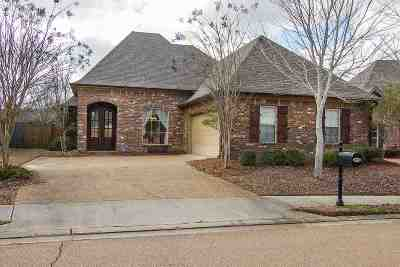 Rankin County Single Family Home For Sale: 190 Provonce Park