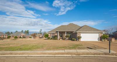 Rankin County Single Family Home For Sale: 220 Fairview Dr