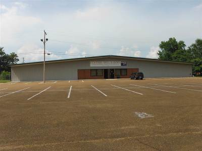 Leake County Commercial For Sale: 611 Allenwood Dr