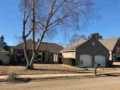 Brandon Single Family Home For Sale: 217 Azalea Ct