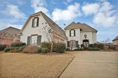 Madison Single Family Home For Sale: 390 Summerville Dr