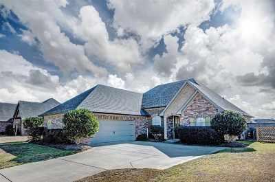 Brandon Single Family Home For Sale: 412 Belle Oak Xing