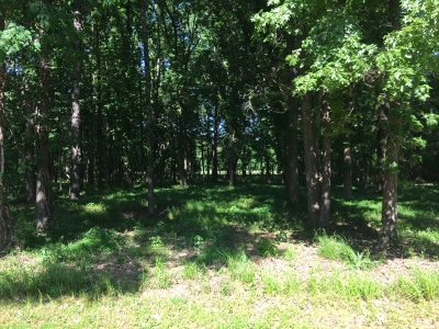 Clinton Residential Lots & Land For Sale: Chatham Pl