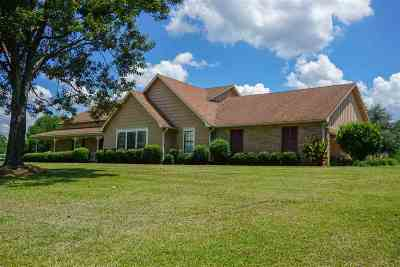Jackson Single Family Home For Sale: 4782 Terry Rd