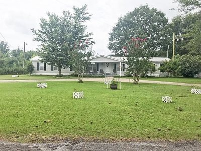 Mize Single Family Home For Sale: 440 Scr 92
