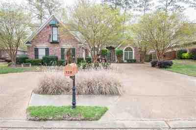 Brandon Single Family Home For Sale: 120 Bridgepointe Blvd