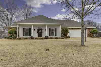 Clinton Single Family Home For Sale: 116 Warrior Ln