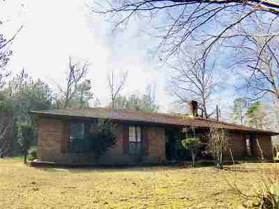 Smith County Single Family Home For Sale: 402 Creek St