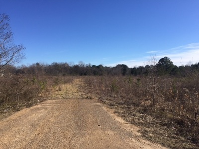 Jackson Residential Lots & Land For Sale: Maddox Rd