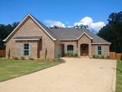 Brandon Single Family Home For Sale: 506 East Cowan Creek Cv