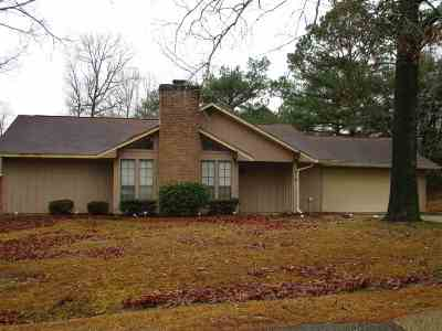 Byram Single Family Home For Sale: 319 Barfield Dr