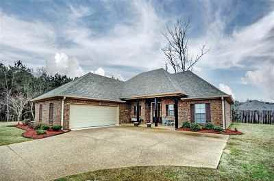 Rankin County Single Family Home For Sale: 374 Towne St