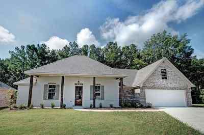 Rankin County Single Family Home For Sale: 937 Willow Grande Cir