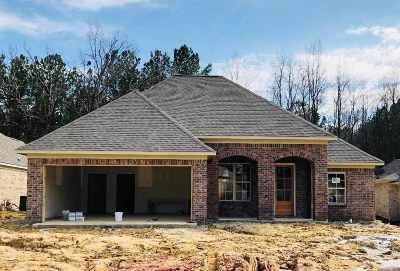 Rankin County Single Family Home For Sale: 927 Willow Grande Cir