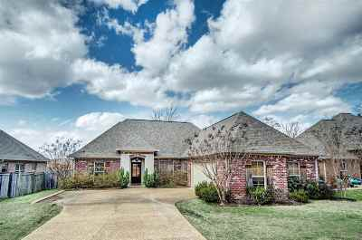 Rankin County Single Family Home For Sale: 213 Turtle Ln