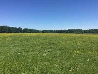 Residential Lots & Land For Sale: New Zion Rd