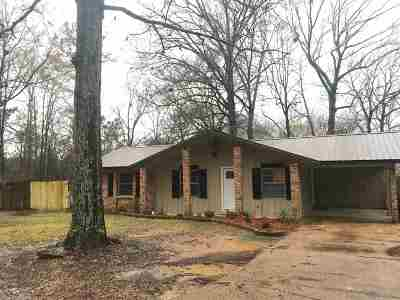Pearl Single Family Home For Sale: 515 Tina Ln