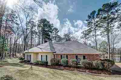 Brandon Single Family Home For Sale: 521 East Point Dr