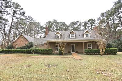 Brandon Single Family Home For Sale: 1005 Scenic Dr