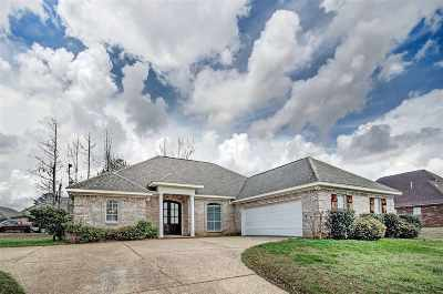 Byram Single Family Home For Sale: 716 Creston Dr