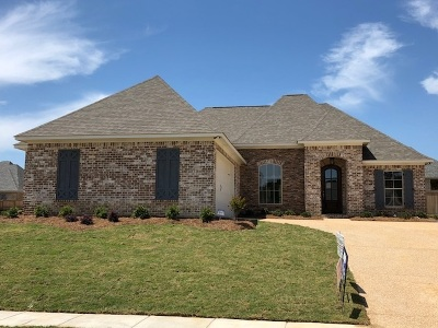 Brandon MS Single Family Home Contingent/Pending: $248,500