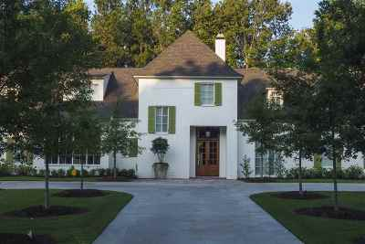 Ridgeland Single Family Home For Sale: 119 Hidden Oaks Trail