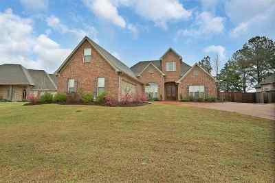 Brandon Single Family Home For Sale: 821 Osagian Cir.